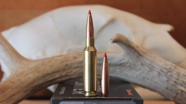 Top Lead-free Ammo for Shooting And Hunting Image